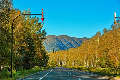 矢羽根付きポールのある北海道の道路