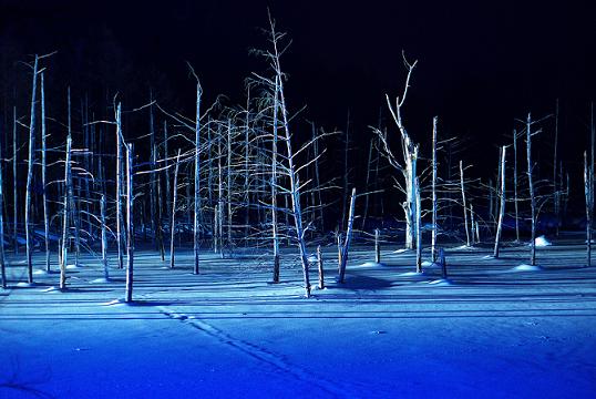 冬の美瑛町青い池