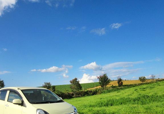 高原をドライブする車
