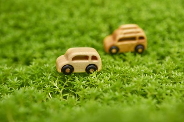 芝生の上の木製トイカー
