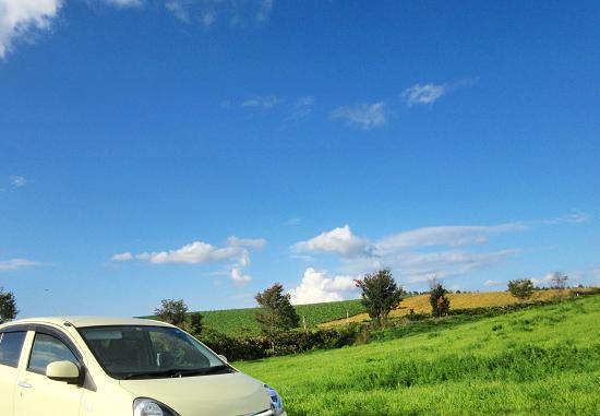 草原をドライブする車