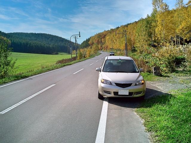 道の脇に停車する車